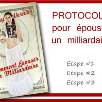 comment épouser un milliardaire audrey vernon spectacle one woman show guide manuel à savoir info