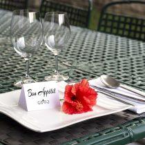 souhaiter un bon appétit lady gentleman courtoisie à table étiquette protocle savoir-vivre bonnes manières femme homme enfants éducation guide cours leçon pdf gratuit